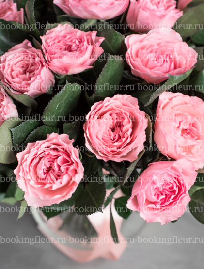 Монобукет из 23 роз Mayra's Rose