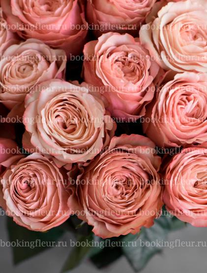 Монобукет из 25 роз Kahala