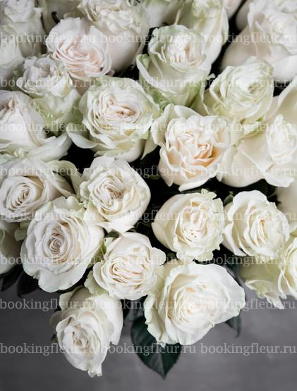 Монобукет из 51 розы Mondiale