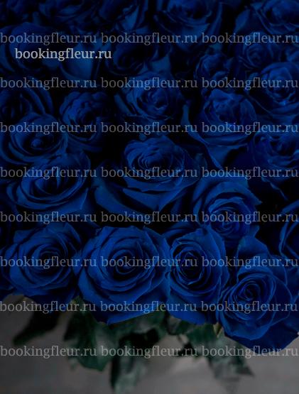 Монобукет из 51 розы Vendela Blue