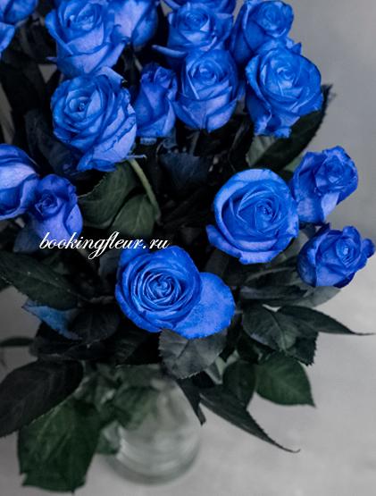 Классическая роза Blue Vendela (Синяя роза)