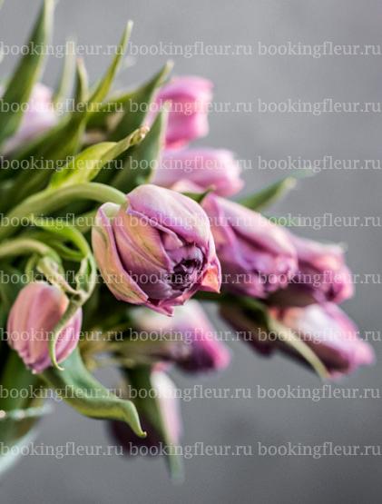 Тюльпан Double Price