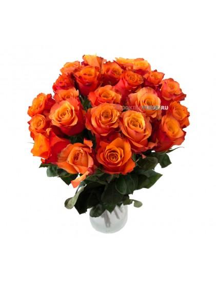 Монобукет из 25 оранжевых роз Orange Crush
