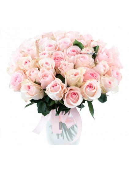 41 роза Novia