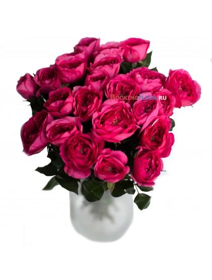 23 пионовидные розы BARONESSE